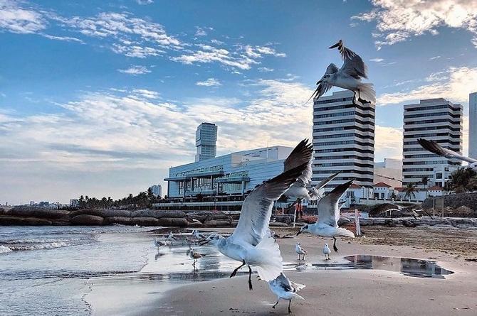 Pronostican para este martes un día cálido en Veracruz-Boca del Río