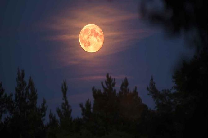 No te pierdas ver la Luna del cazador este mes de Octubre